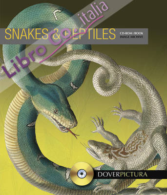 Snakes and Reptiles.