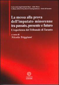 La messa alla prova dell'imputato minorenne tra passato, presente e futuro. L'esperienza del Tribunale di Taranto.