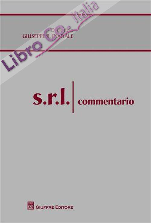 S.r.l. Commentario