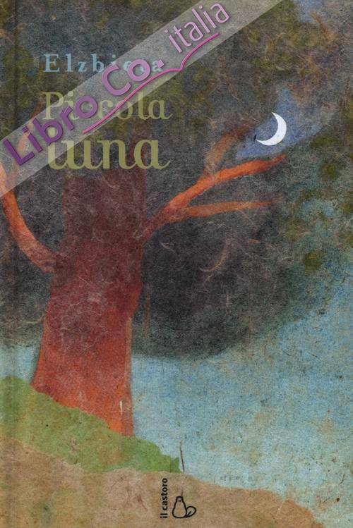 Piccola luna. Ediz. illustrata