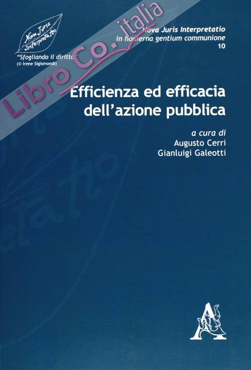 Nova juris interpretatio in hodierna gentium communione. Vol. 10: Efficienza ed efficacia dell'azione pubbica