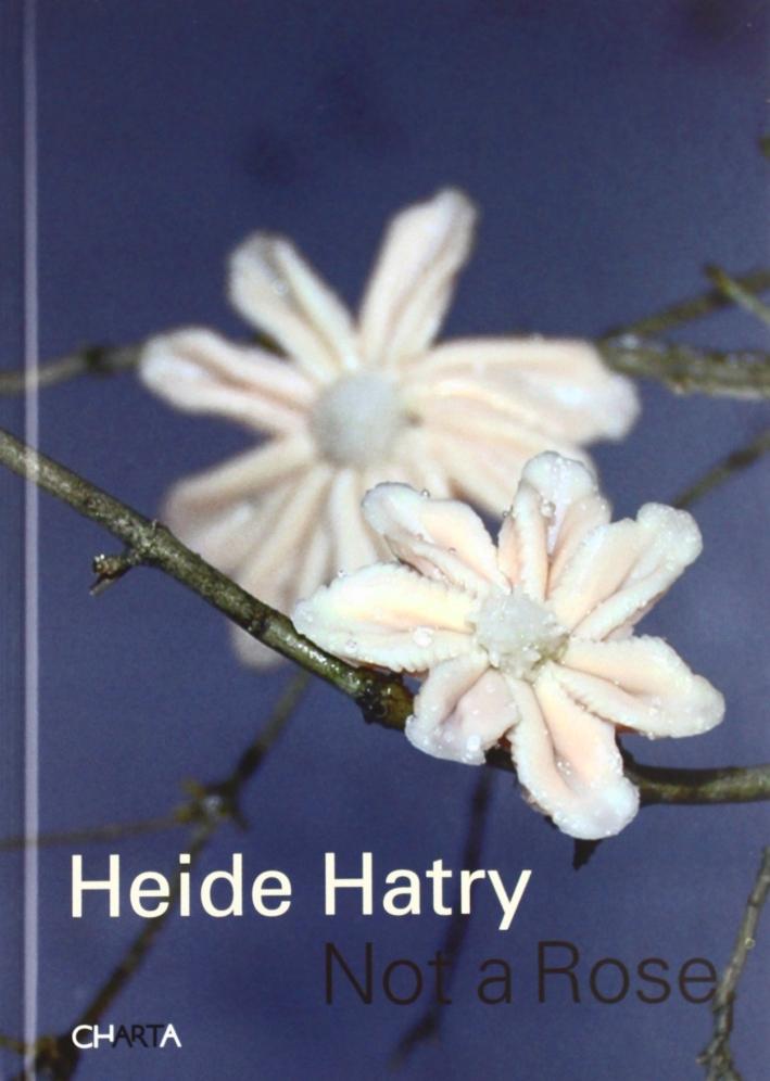 Heide Hatry. Not a rose