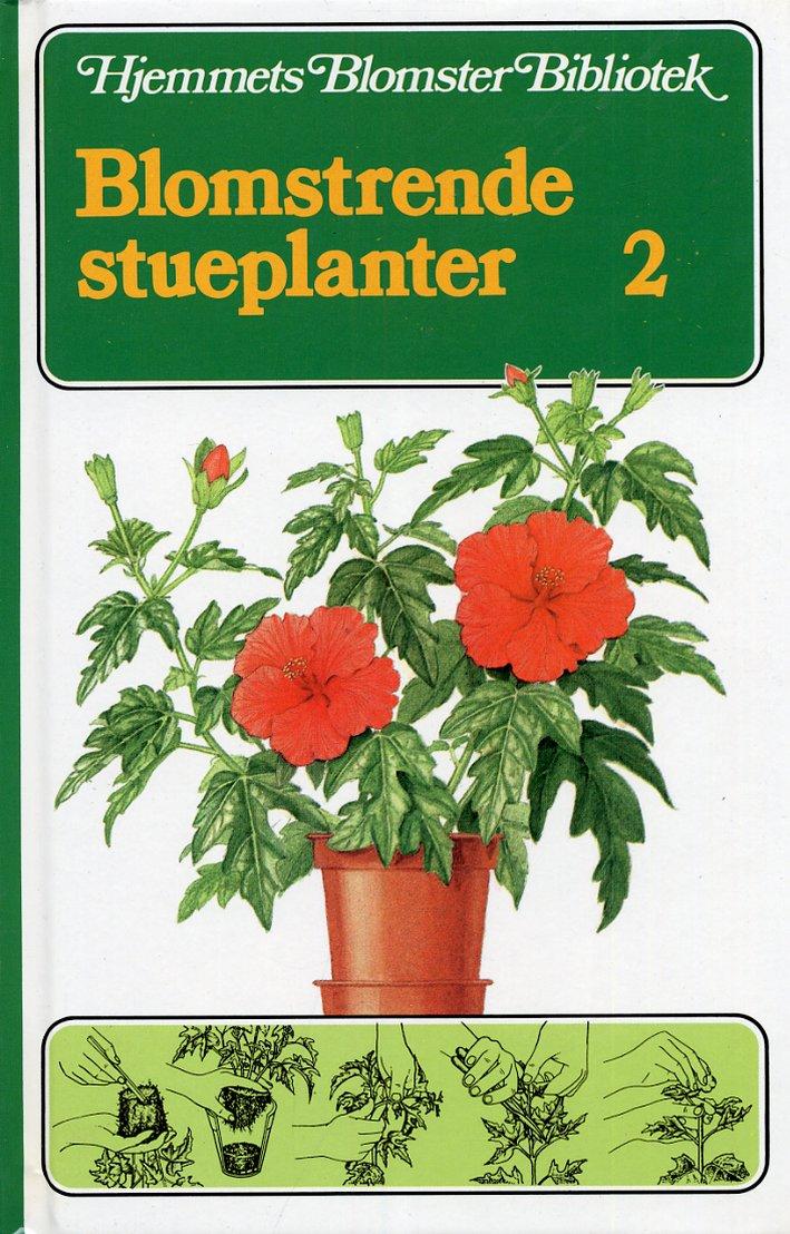 Blomstrende stueplanter. 2
