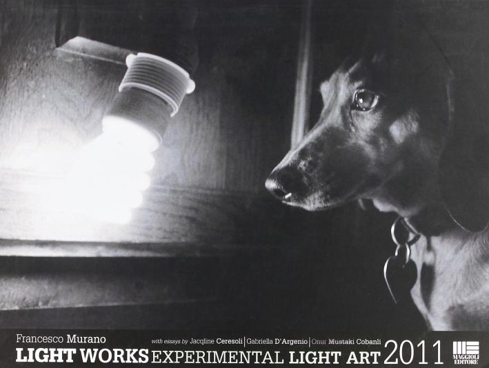 Light Works Experimental Light Art 2011.