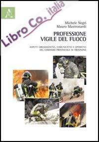 Professione vigile del fuoco. Aspetti organizzativi, comunicativi e operativi del comando provinciale di Frosinone.