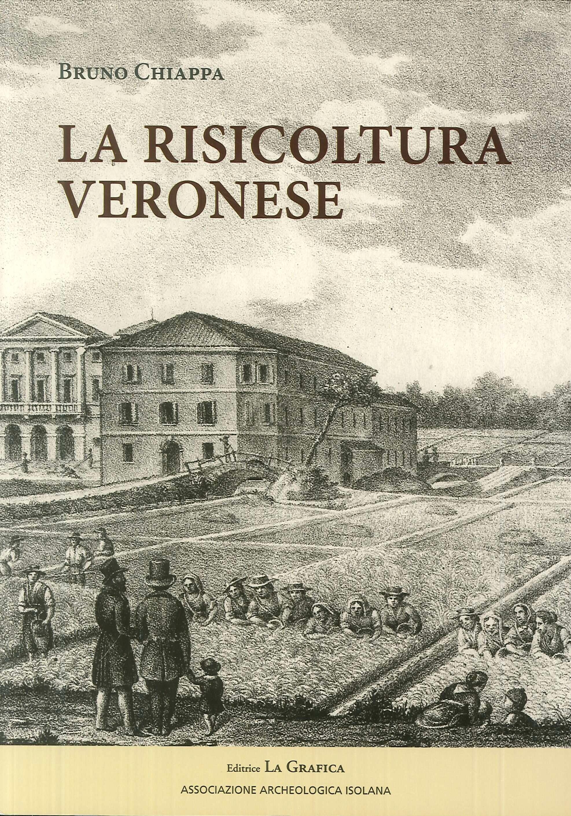 La risicoltura veronese (XVI-XX secolo).