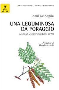 Una leguminosa da foraggio. Leucaena leucocephala (Lam.) De Wit.