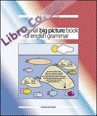 The small big picture book of english grammar.