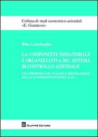 La componente immateriale e organizzativa del sistema di controllo aziendale. Una proposta di analisi e misurazione delle condizioni di efficacia.