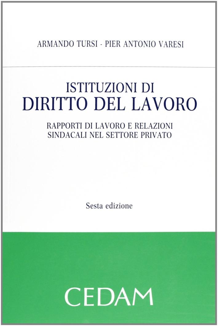 Istituzioni di diritto del lavoro. Rapporti di lavoro e relazioni sindacali nel settore privato.