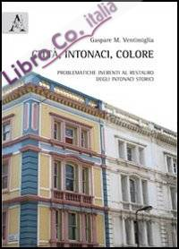 Città, intonaci, colore. Problematiche inerenti al restauro degli intonaci storici