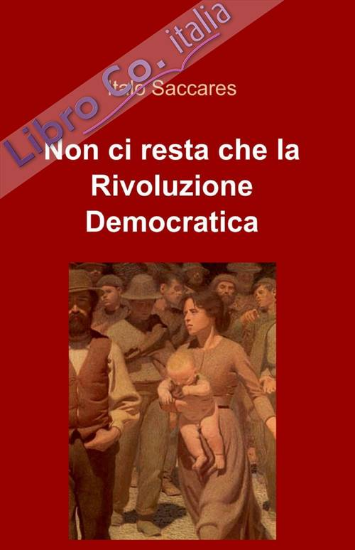 Non ci resta che la rivoluzione democratica.
