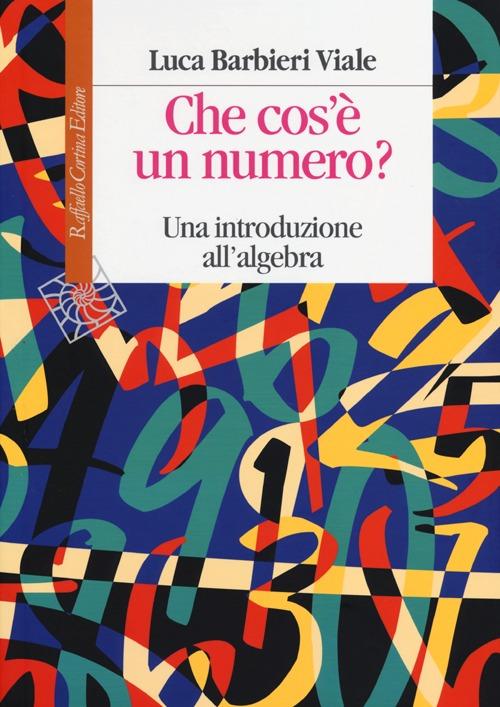 Che cos'è un numero. Un'introduzione all'algebra.