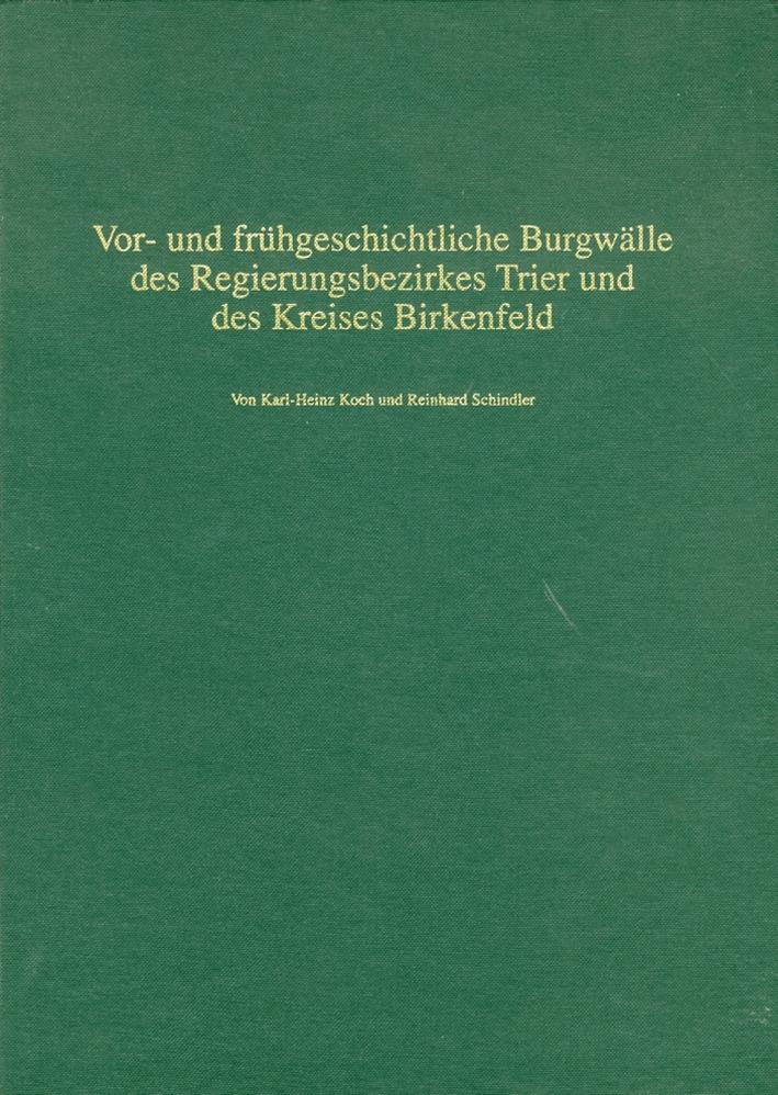Vor- und frùhgeschichtliche Burgwalle des Regierungsbezirkes Trier und des Kreises Birkenfeld