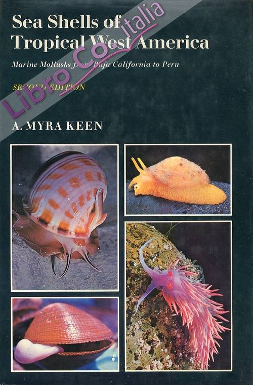 Sea Shells of Tropical West America. Marine Mollusks From Baja California To Peru