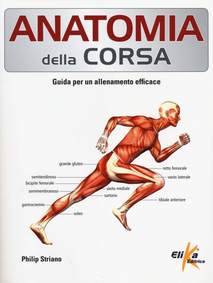 Anatomia della corsa. Guida per un alenamento efficace