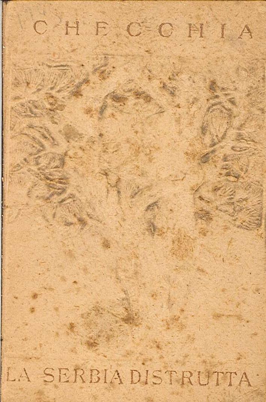 La Serbia distrutta. Lettere dalla Serbia Insanguinata. (Settembre-Decembre 1915)
