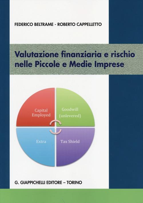 Valutazione finanziaria e rischio nelle piccole e medie imprese.