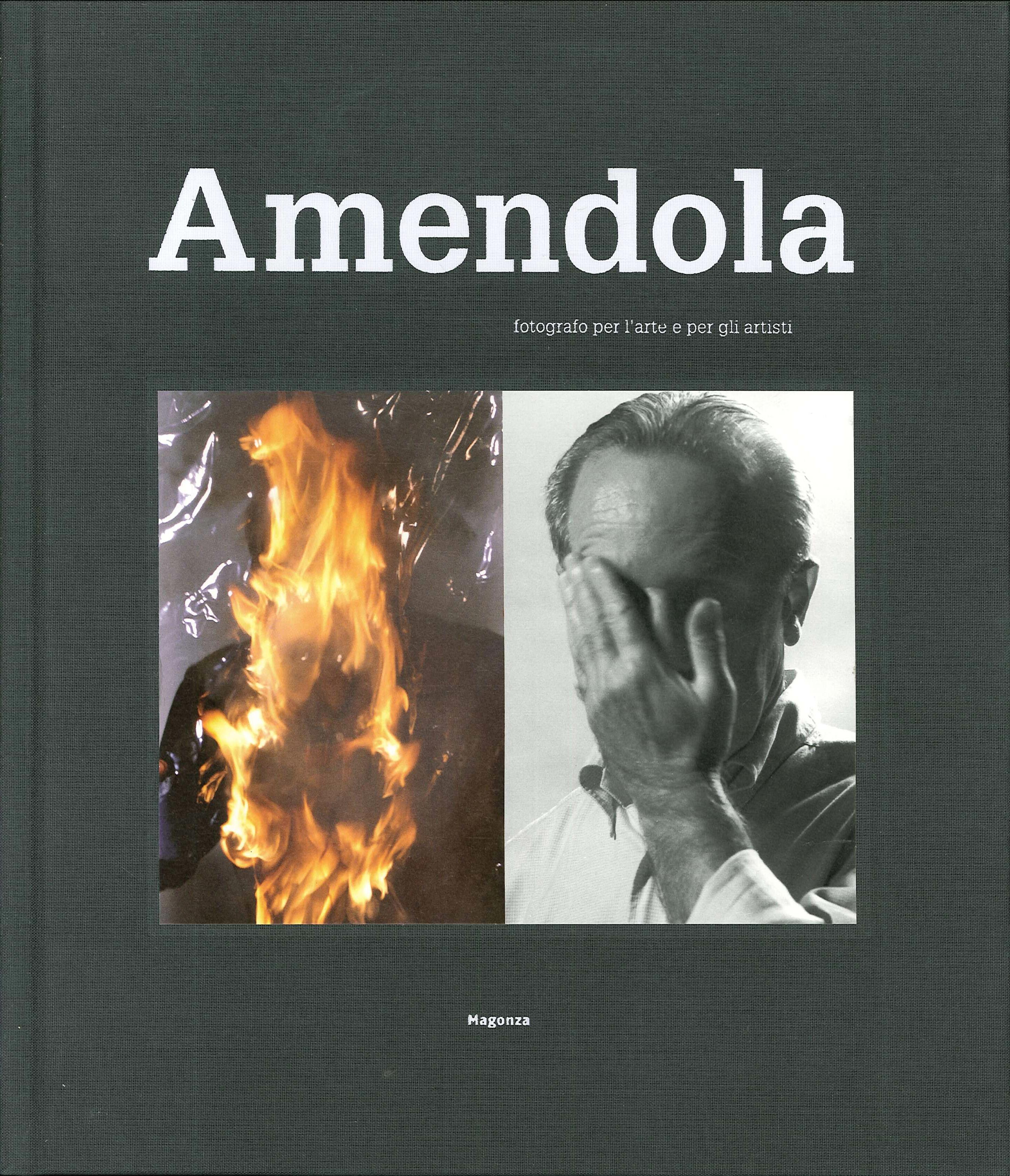 Aurelio Amendola. Fotografo per l'arte e per gli artisti. Ediz. illustrata