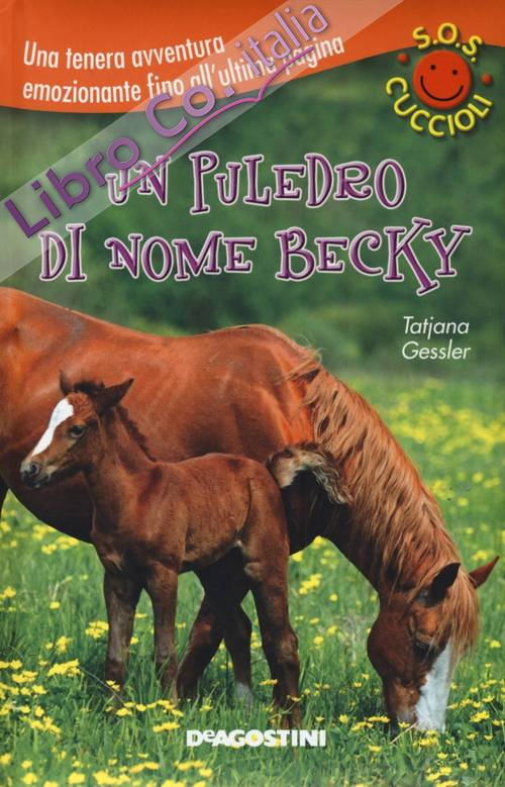 Un puledro di nome Becky. S.O.S. cuccioli