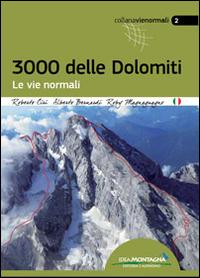 3000 delle Dolomiti. Le vie normali