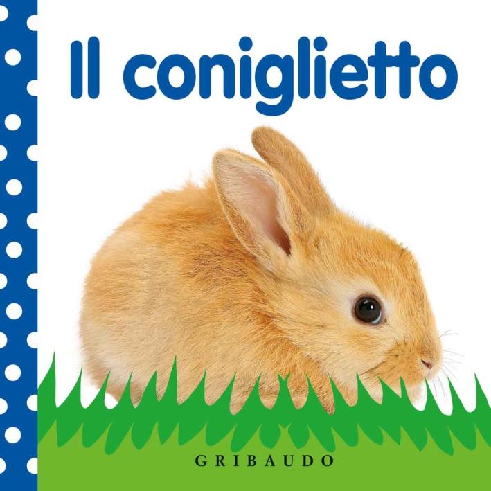 Il coniglietto. Ediz. illustrata