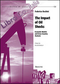 The impact of Oil shocks. Economic models and cross country analysis