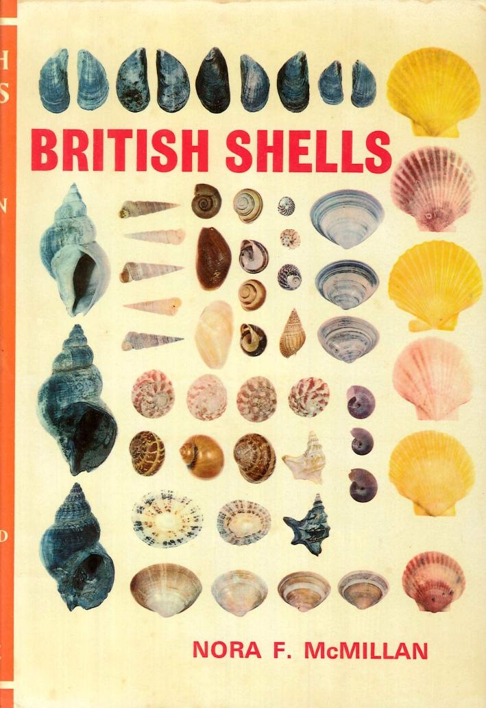 British Shells.