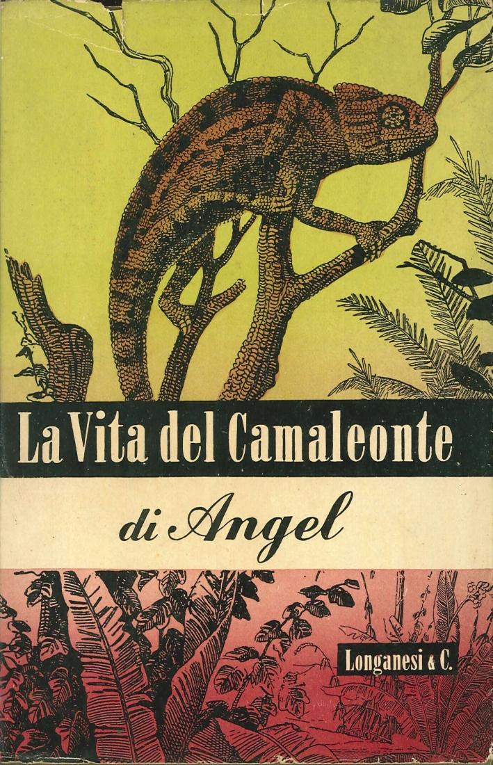 La Vita del Camaleonte e di Altre Lucertole