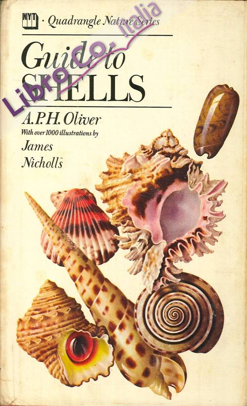 Guide To Shells