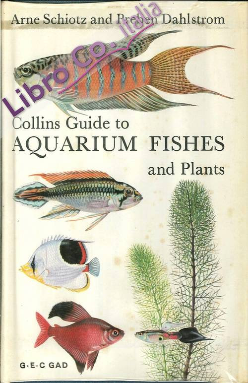 Collins Guide To Aquarium Fishes and Plants.