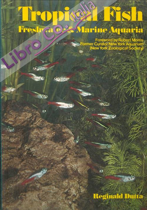 Tropical Fish. Freshwater and Marine Aquaria. Setting Up and Maintaining Freshwater and Marine Aquaria