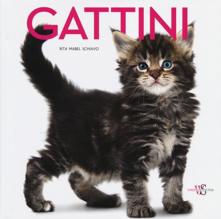 Gattini. Ediz. illustrata