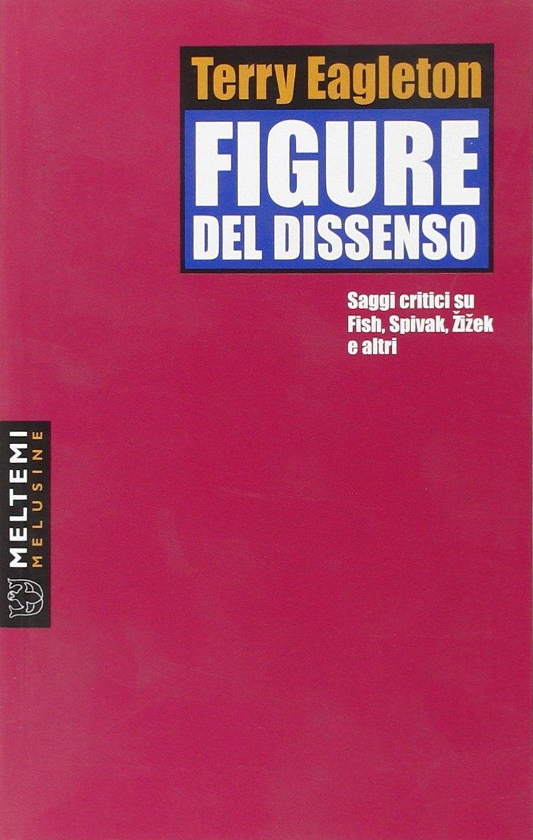 Figure del dissenso. Saggi critici su Fish, Spivak, Zizek e altri