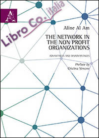 The network in the non profit organizations. Advantages and disavantages.