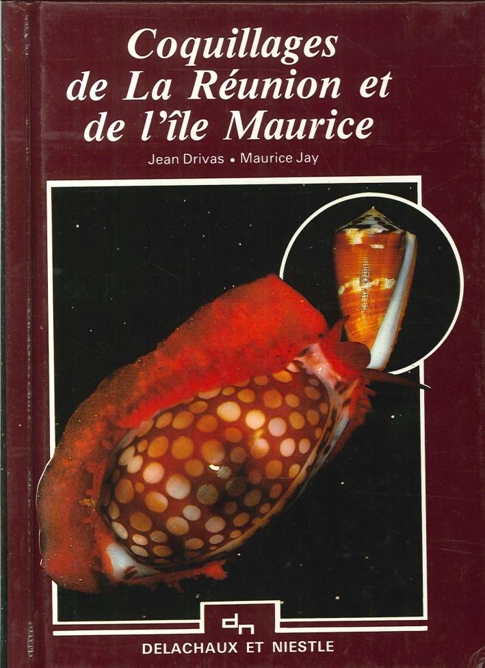 Coquillages De la Réunion Et De l'Ìle Maurice.
