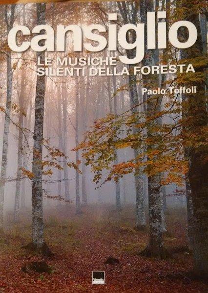Cansiglio. Le musiche silenti della foresta