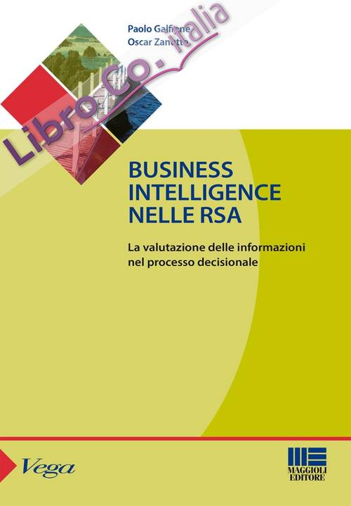 Business intelligence nelle RSA. La valutazione delle informazioni nel processo decisionale.