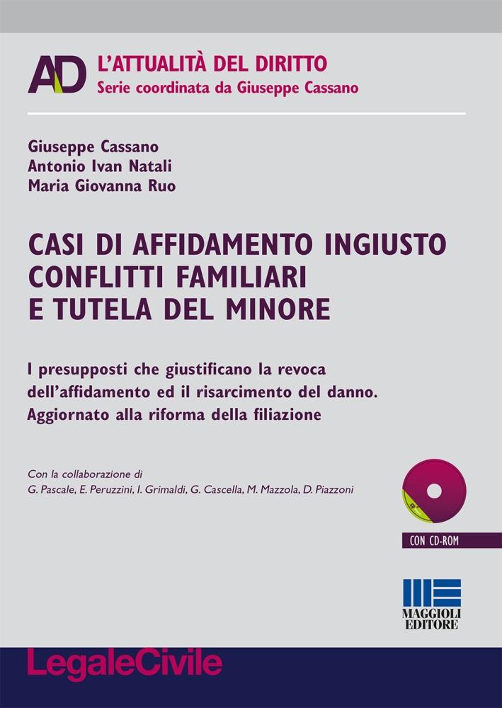 Casi di affidamento ingiusto conflitti familiari e tutela del minore. Con CD-ROM.