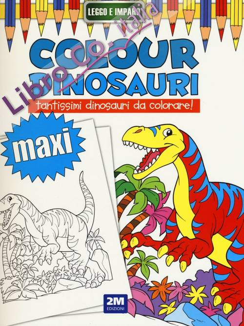 Colour Dinosauri Maxi