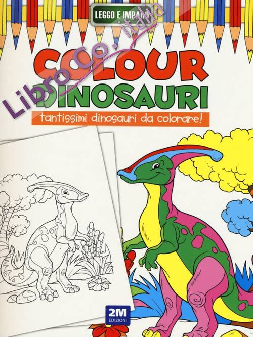 Colour dinosauri. Ediz. illustrata