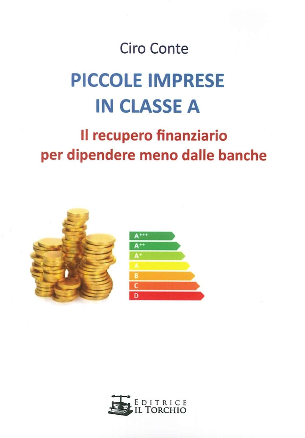 Piccole Imprese in Classe A. Il Recupero Finanziario per Dipendere Meno dalle Banche