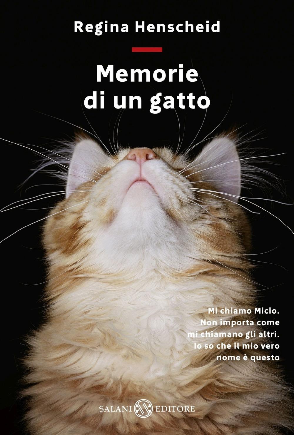 Memorie di un gatto.