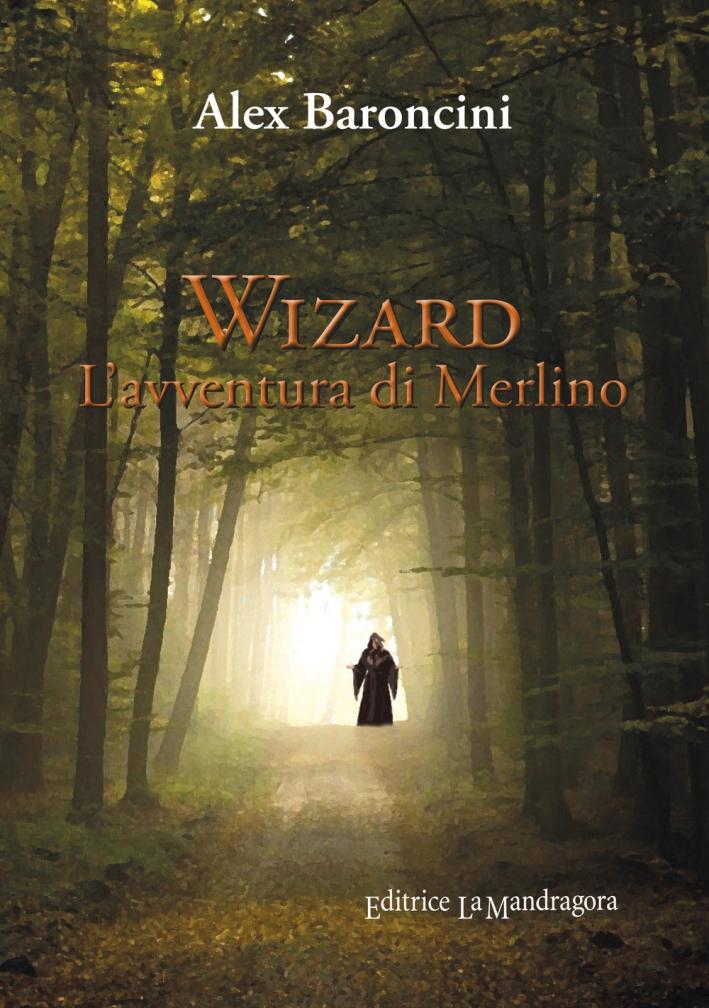 Wizard l'avventura di Merlino.