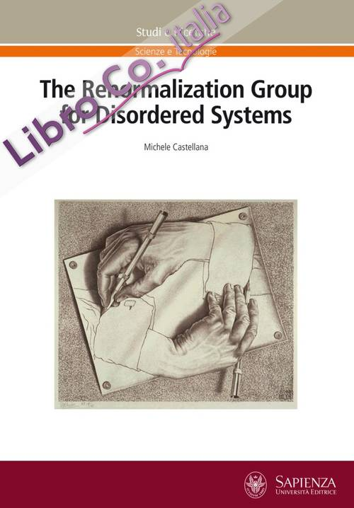 The renormalization group for disordered systems