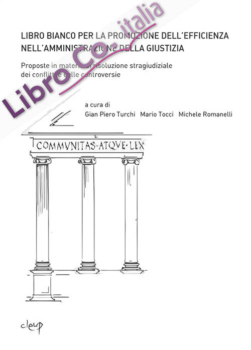 Libro bianco per la promozione dell'efficienza nell'amministrazione della giustizia. Proposte in materia di risoluzione stragiudiziale dei conflitti...