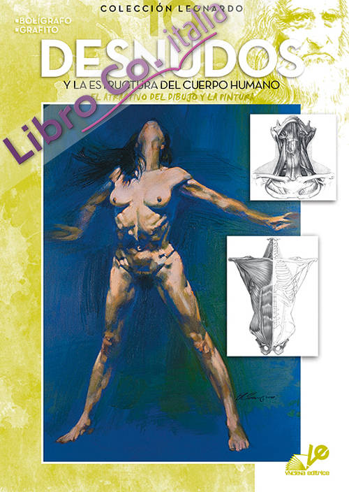 Desnudos y la estructura del cuerpo humano