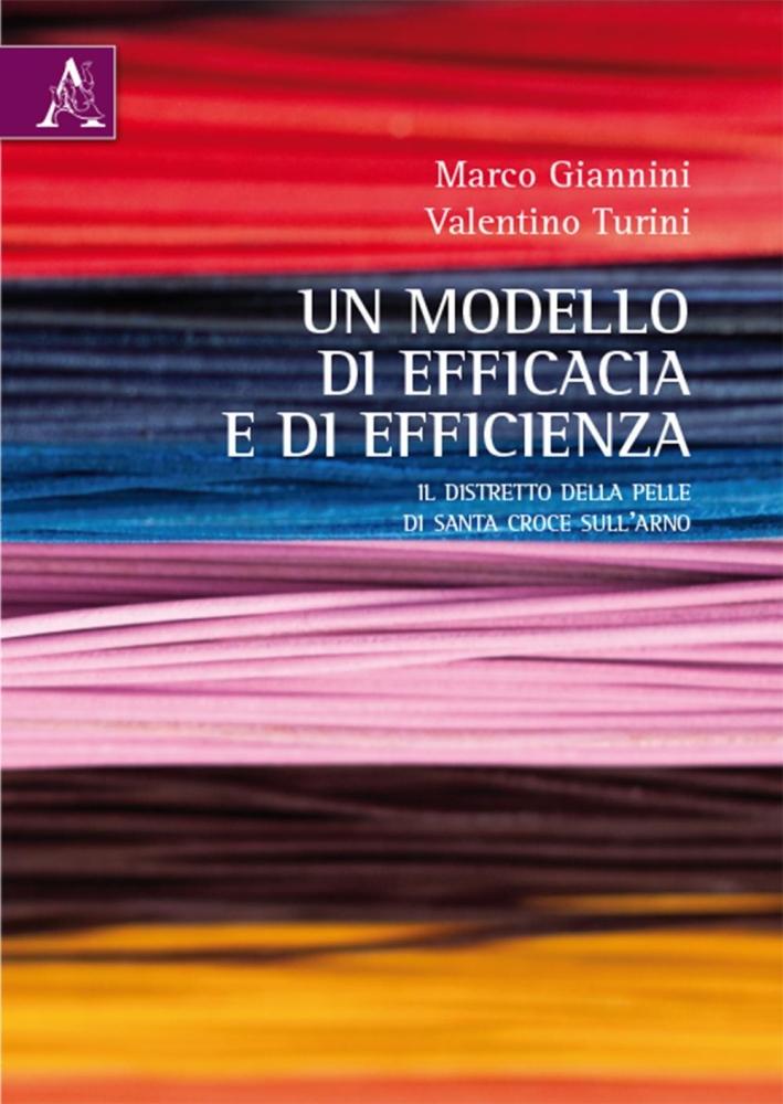 Un modello di efficacia e di efficienza. Il distretto della pelle di Santa Croce sull'Arno.