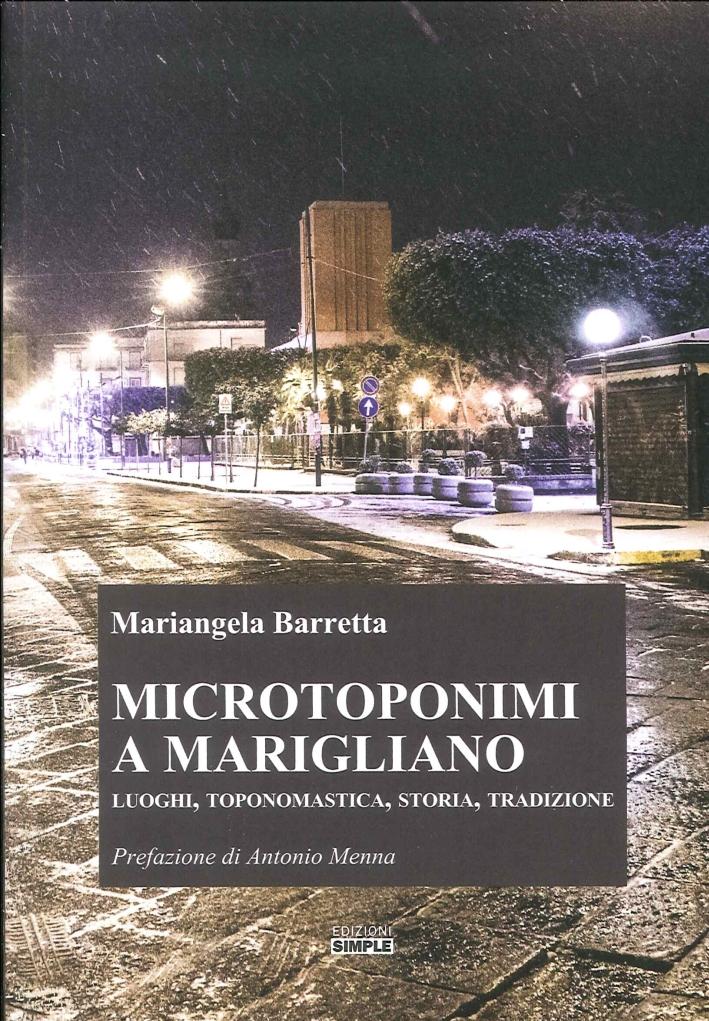 Microtoponimi a Marigliano. Luoghi, Toponomastica, Storia, Tradizione.