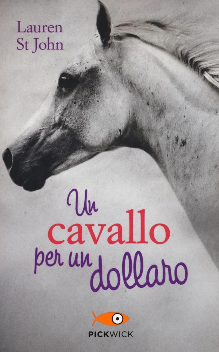 Un cavallo per un dollaro.